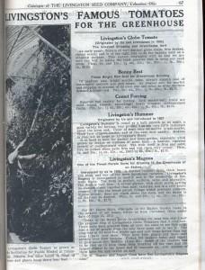 Каталог 1916 года