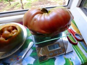 помидоры чёрное сердце бреда