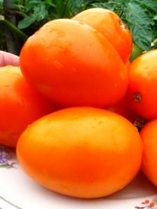 помидоры оранжевый банан