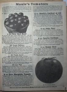 каталог 1928 года