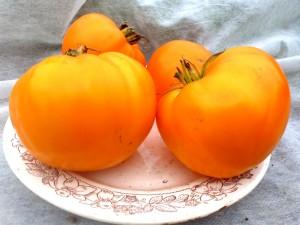Помидоры German Orange Strawberry - Клубника Оранжевая (10 семян за  80 руб.)