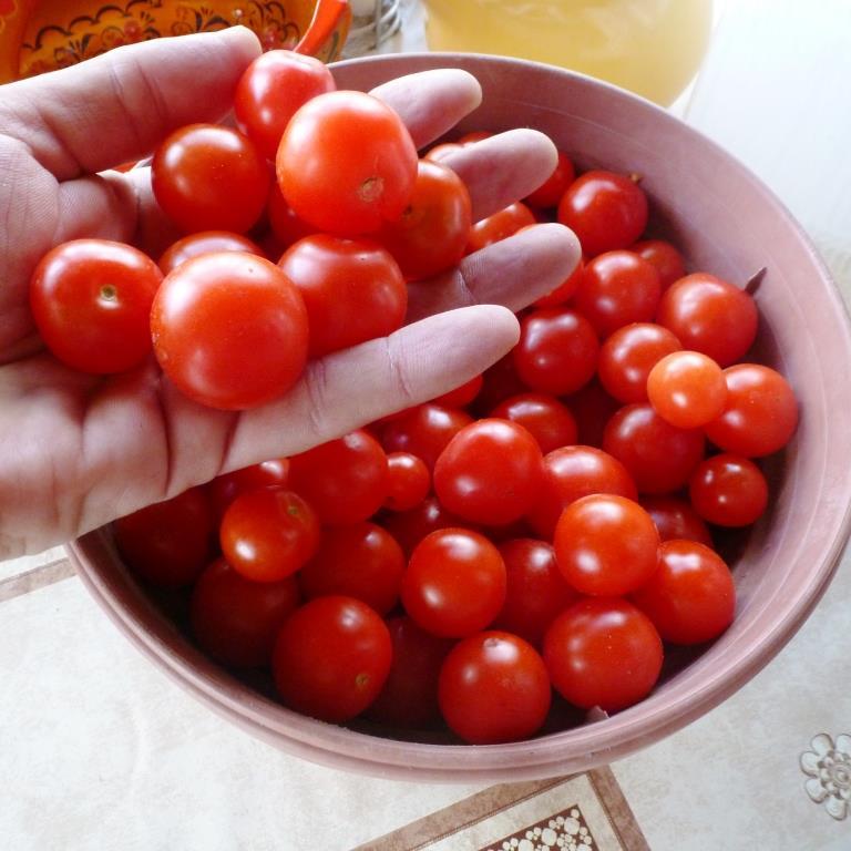 Не растут помидоры в горшке